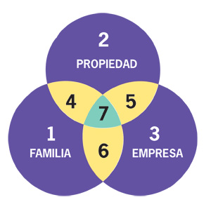 What Makes Family Businesses Different  (Three Circle model)